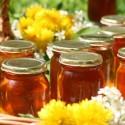 Venta de miel ecologica y polen de producción española