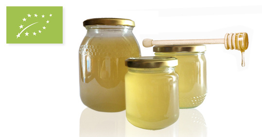 Organic rosemary honey from Spain
